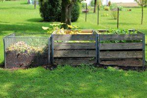 Compost : réduire ses déchets tout en nourrissant les sols !