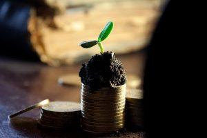 Le financement participatif : agir durable et solidaire !